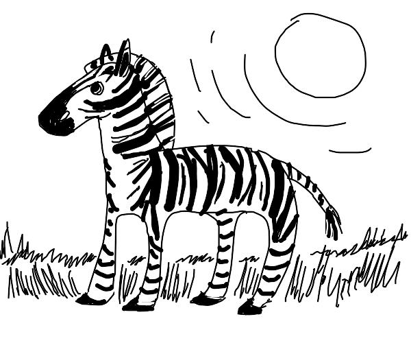 Zebra in the hot hot sun