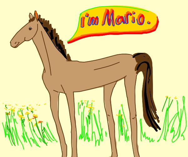 YOOO, MARIO BALLIN'!??!'1'1'