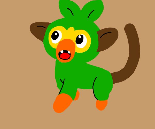 Grookey (Pokémon)