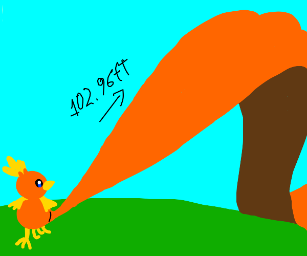 Torchic with a tail 99 times its body length