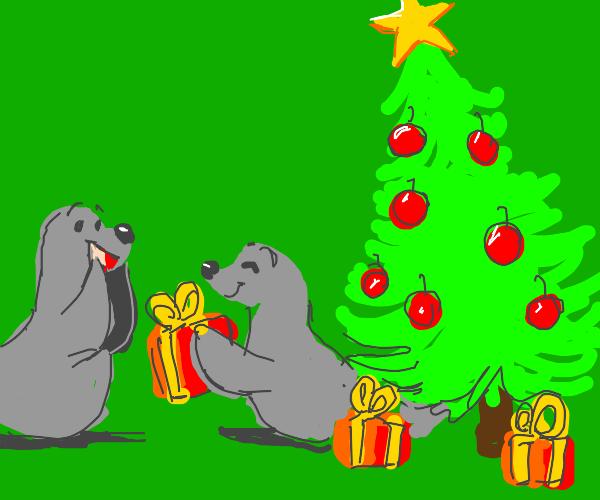 Seals celebrating Xmas