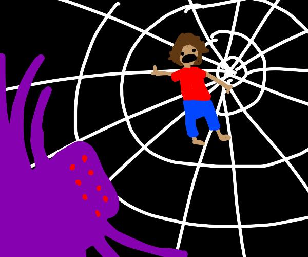 man stuck in giant tarantula web