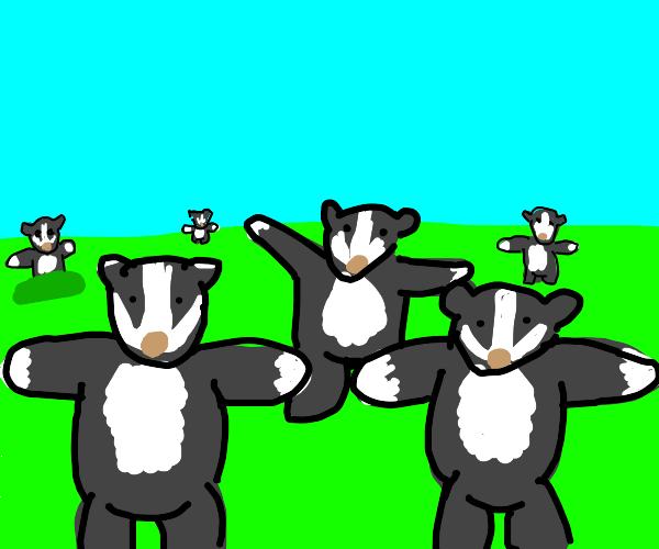 badgers badgers badgers badgers badgers