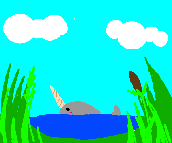 narwhal vibin in a pond