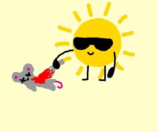 the sun kills a mouse