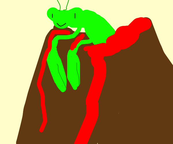 Praying Mantis in a Volcano