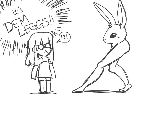 Anime girl shocked at the sexy legged rabbit