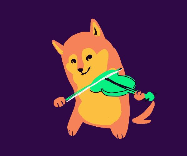 Doggy violinist