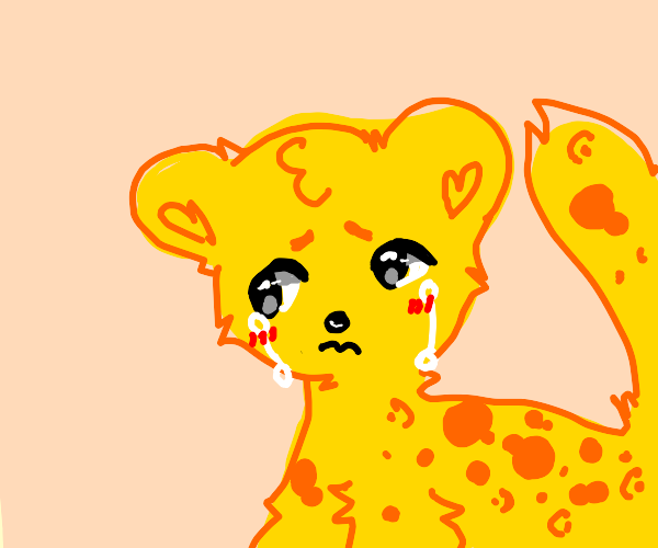 Leopard Crying