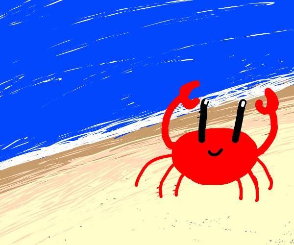 Crab at the sea