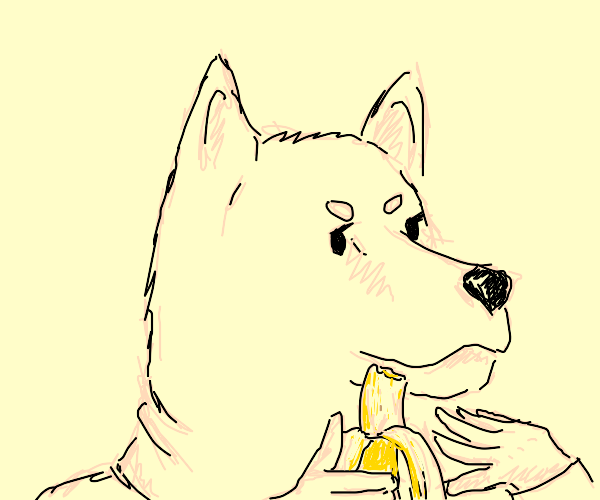 Dog with hands eating a banana