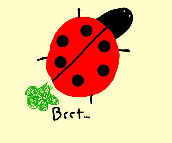 Bug farting