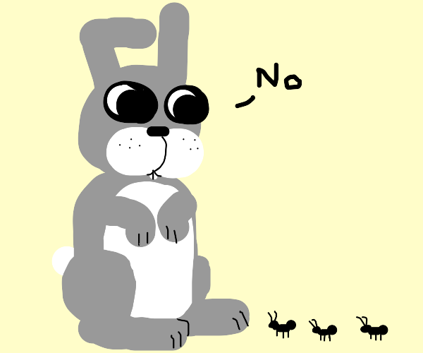 bunny says no to ants