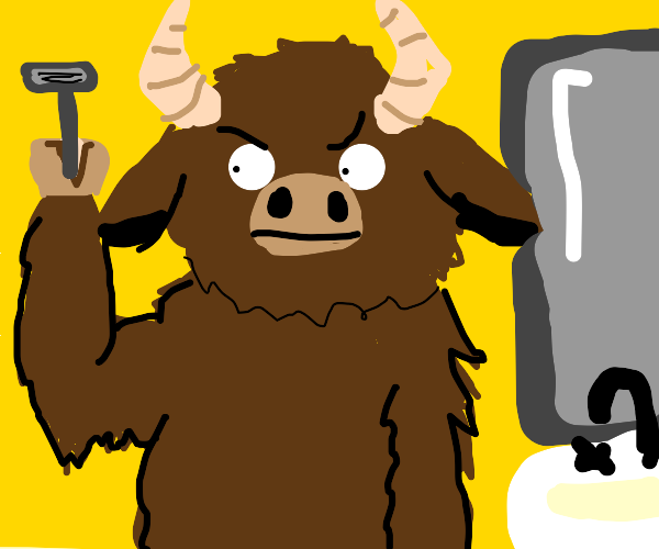 A buffalo wonders how to shave