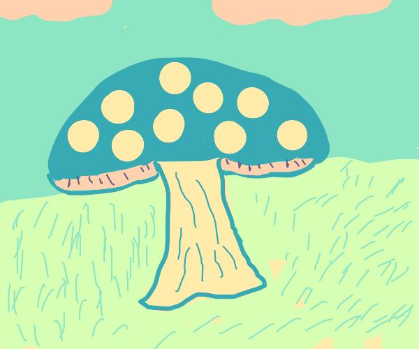 blue spotted mushroom