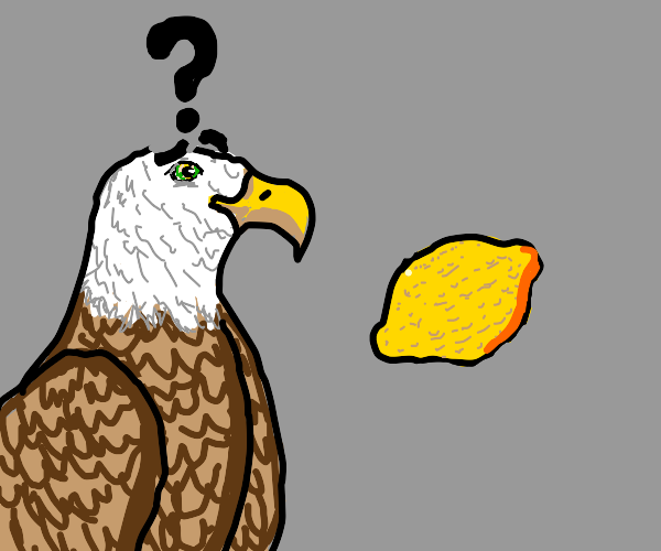 Confused eagle with lemon