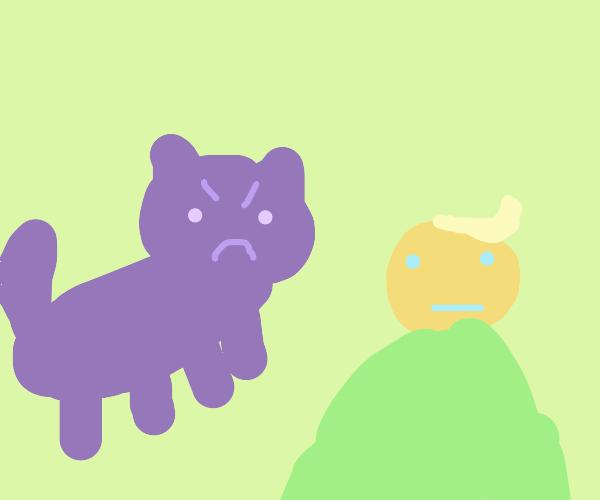black cat spirit glowers at president