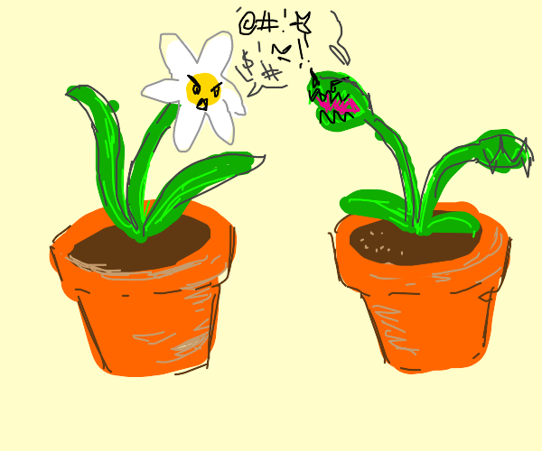 Fly trap and flower arguing