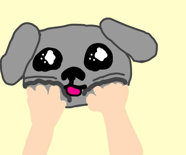 Squishing a puppy's cheeks