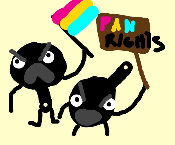 the pan revolution