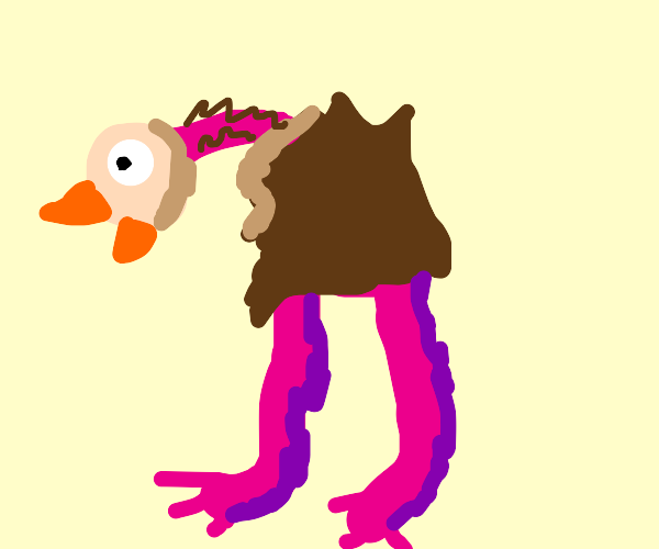 Pink and brown ostrich