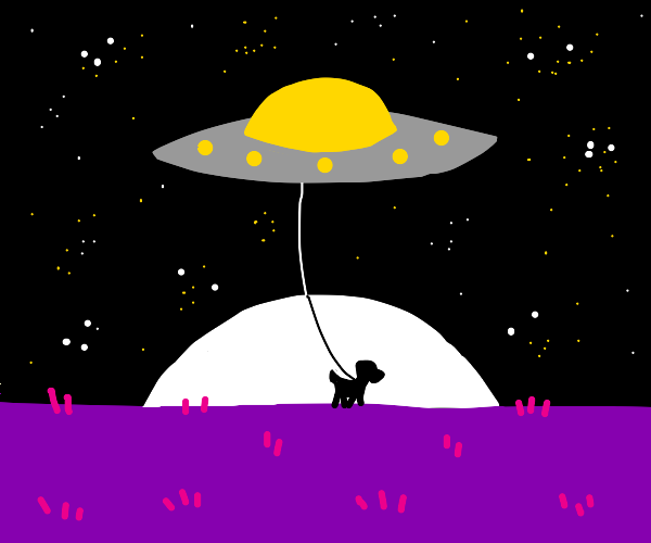 UFO is taking his dog for a walk