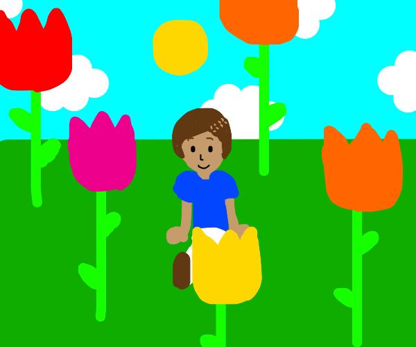 Guy in field of giant tulips