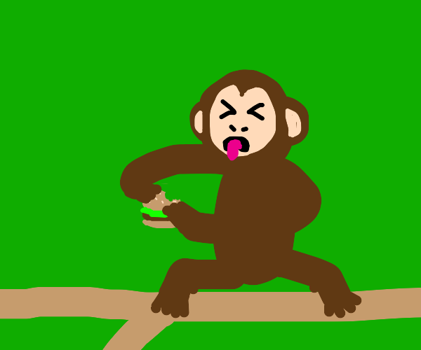 Monkey hates burgirs