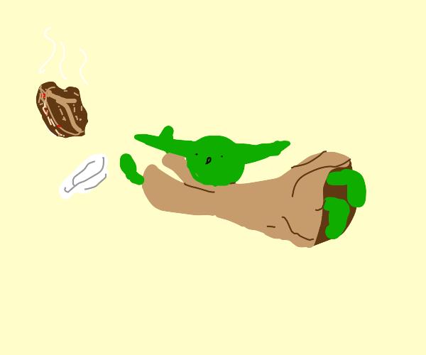 Yoda dropped his steak