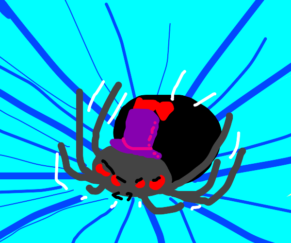 Angry flying spider with a purple hat