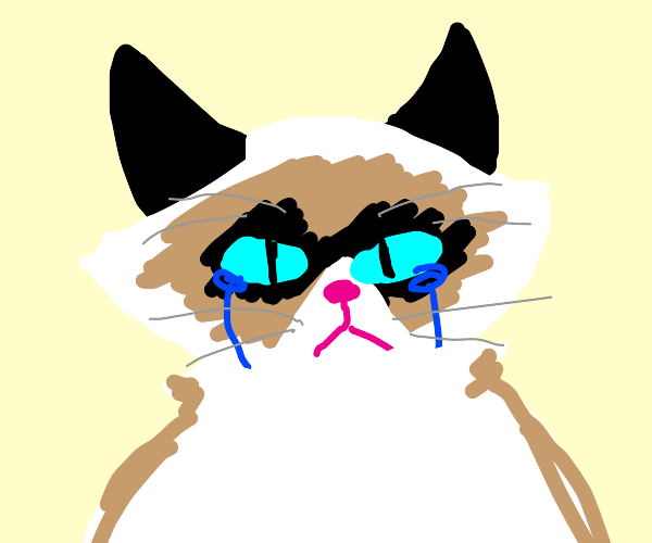 grumpy cat is crying :(