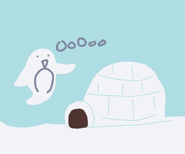 Penguin Haunts Igloo. OooooOOOOOoooo