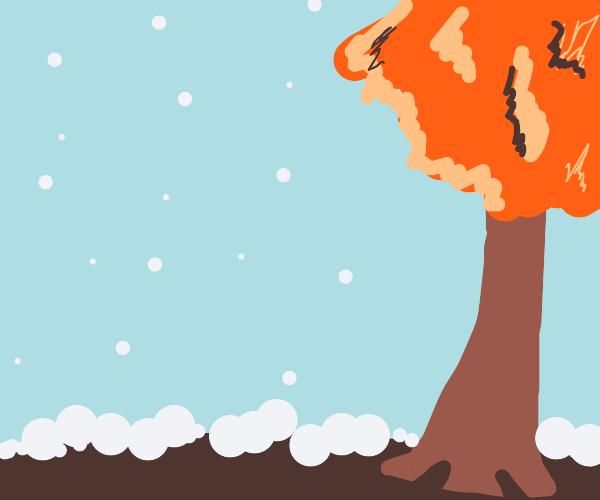 Snowing in autumn