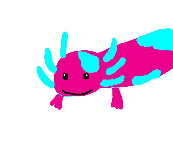 axolotl cotton candy