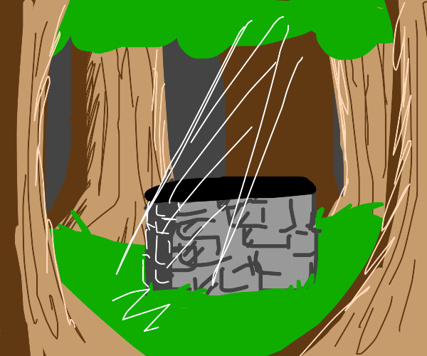 A well in the forest