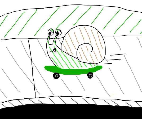 snail cruising on a skateboard