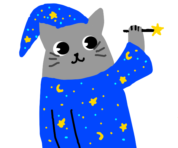 fancy grey cat wizard