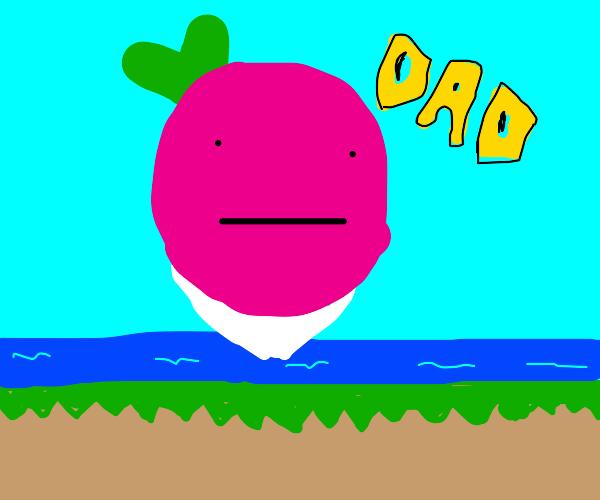 Dadish (fun platform game, look it up)