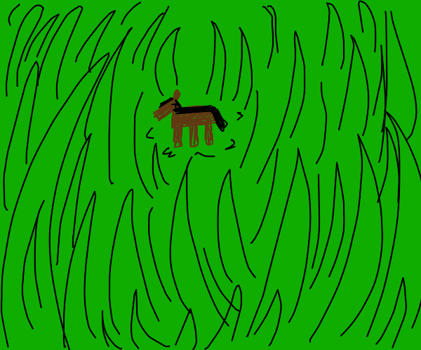 square horse in a void of grass