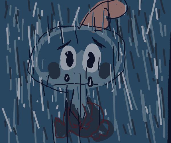sobble cries in the rain