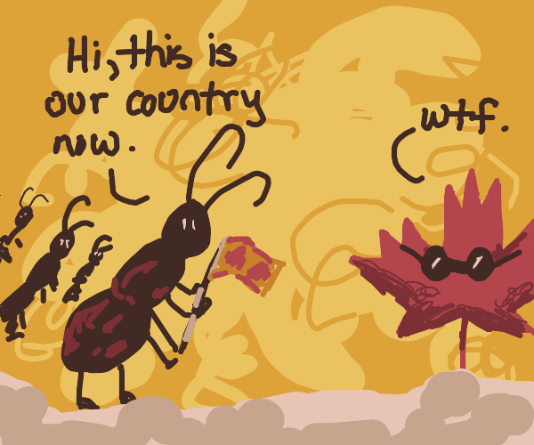 ants invade canada