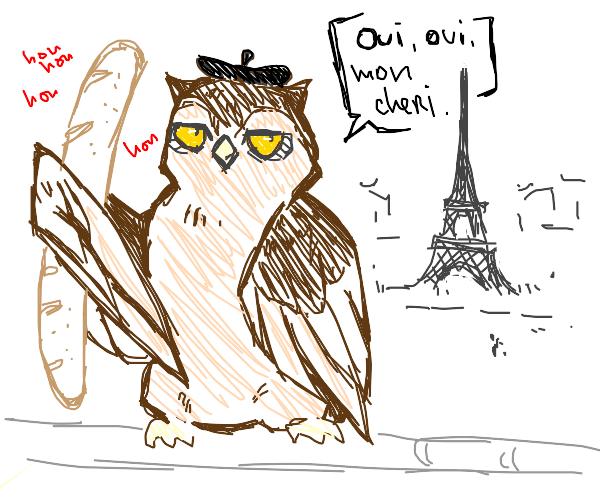 owl in france