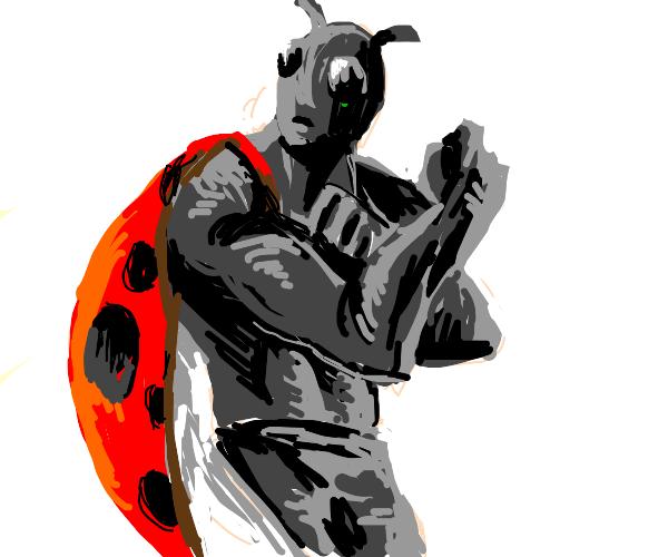 buff ladybug