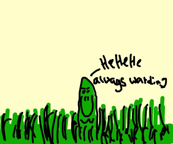 creepy grass