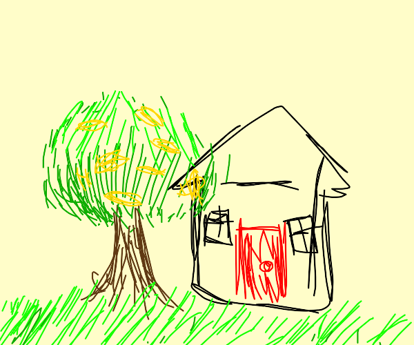 House with a red door and lemon tree