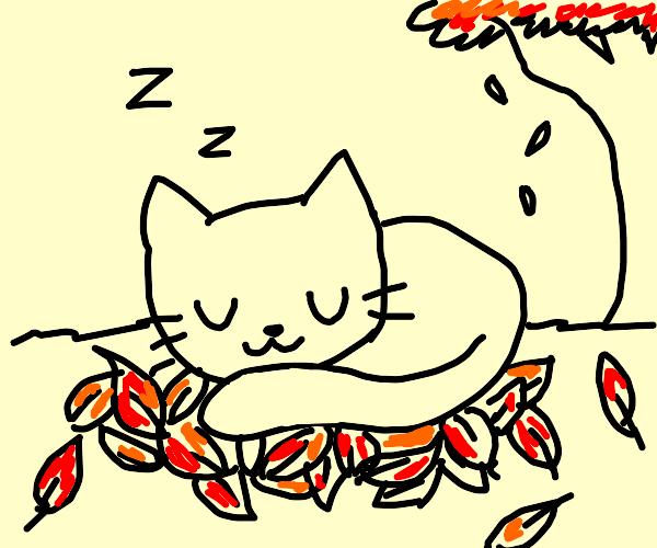 Kitten blissfully resting on autumn leaves