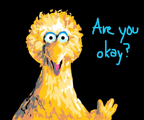 Big bird asks you if you are ok