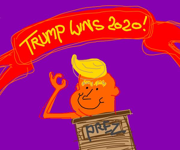 Trump Wins 2020 Election