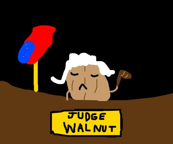walnut judge