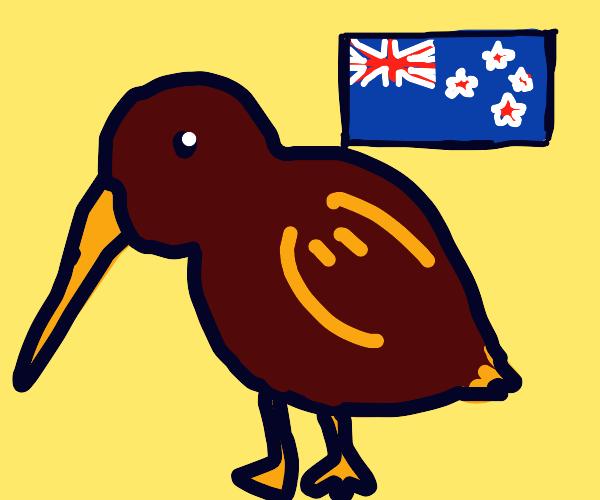 kiwi (bird not fruit)